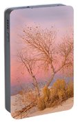 White Sands Sunset 1 Portable Battery Charger