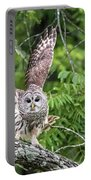 Whooo Goes There Portable Battery Charger