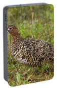 Willow Ptarmigan Portable Battery Charger