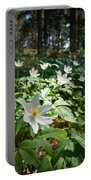 Wood Anemones Portable Battery Charger