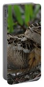 Woodcock In The Woods Portable Battery Charger