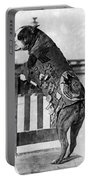 Wwi, Sergeant Stubby, American War Dog Portable Battery Charger