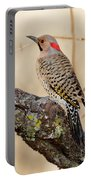 Yellow-shafted Northern Flicker Portable Battery Charger