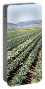 Young Broccoli Field For Seed Production Portable Battery Charger