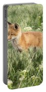 Young Red Tailed Fox Portable Battery Charger