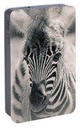 Zebra Colt In Spring Portable Battery Charger
