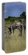 Zebra Group Portable Battery Charger