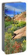 Zion Slickrock Portable Battery Charger