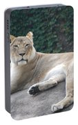 Zoo Lion Portable Battery Charger