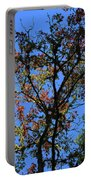 10-15-16--0776 Blue Sky # 2 Don't Drop The Crystal Ball Portable Battery Charger