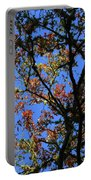 10-15-16--0777 Blue Sky # 3 Don't Drop The Crystal Ball Portable Battery Charger