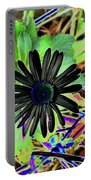 10-15-16--4996 # 2 Montauk Daisy Don't Drop The Crystal Ball Portable Battery Charger