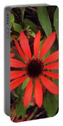 10-27-16--1977 Echinacea Cheyenne Spirit Don't Drop The Crystal Ball Portable Battery Charger