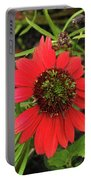 10-27-16--1980 Echinacea Cheyenne Spirit Don't Drop The Crystal Ball Portable Battery Charger