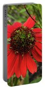 10-27-16--1982 Echinacea Cheyenne Spirit Don't Drop The Crystal Ball Portable Battery Charger