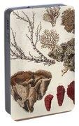 Aquatic Animals - Seafood - Algae - Seaplants - Coral Portable Battery Charger