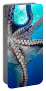 Hawaii, Day Octopus Portable Battery Charger