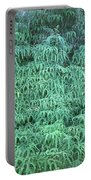 100134 Uluhe Ferns Hawaii Portable Battery Charger