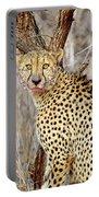 1022 Cheetah Portable Battery Charger