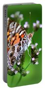1074- Butterfly Portable Battery Charger