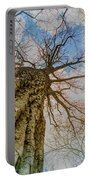 10913 I Am Groot Portable Battery Charger