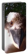 Australia - Kookaburra Looking Right At You Portable Battery Charger