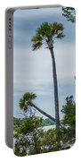 Palmetto Forest On Hunting Island Beach Portable Battery Charger