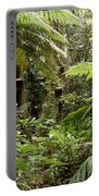 Jungle 30 Portable Battery Charger