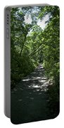 1174, Forest Path Portable Battery Charger