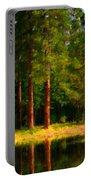 Landscape Poster Portable Battery Charger