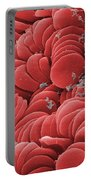 Human Red Blood Cells, Sem Portable Battery Charger