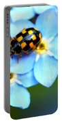 14 Spot Ladybird Portable Battery Charger