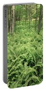 146112 Ferns In Pisgah Nat Forest V Portable Battery Charger