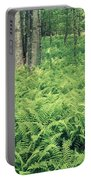 146113 Frens In Pisgah Nat Forest H Portable Battery Charger