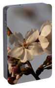 Black Cherry Tree  Portable Battery Charger