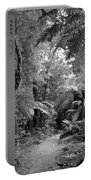 Jungle 45 Portable Battery Charger