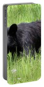 American Black Bear Yellowstone Usa Portable Battery Charger