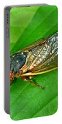 17 Year Periodical Cicada Portable Battery Charger