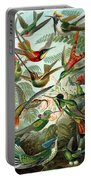 1899 Hummingbird Species Art Forms Of Nature Print Portable Battery Charger