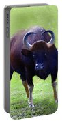 Bull Portable Battery Charger