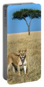 African Lioness Panthera Leo, Serengeti Portable Battery Charger