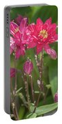 Aquilegia Portable Battery Charger