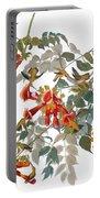 Audubon: Hummingbird Portable Battery Charger