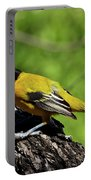 Audubon Oriole Portable Battery Charger