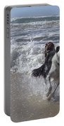 Australia - Border Collie Runs Out Of The Surf Portable Battery Charger