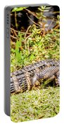 Baby Alligator Portable Battery Charger