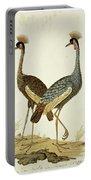 Balearica Regulorum Grey Crowned Crane, Robert Jacob Gordon, 1777 - 1786 Portable Battery Charger