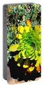 Succulent Study 2 Portable Battery Charger