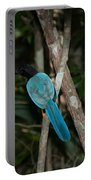 Birds From Coba Portable Battery Charger