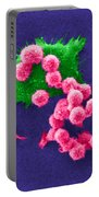 Cancer Cell Death, Sem 2 Of 6 Portable Battery Charger